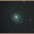 M101 the Pinwheel Galaxy,                                g0ibi