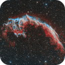 NGC 6995 Eastern Veil,                                David Wills (Pixe...