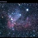 Wizard Nebula - NGC7380,                                Ashkan Arefi