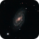 M109 NGC 3992,                                francopanetta