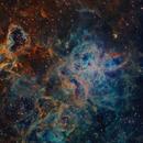 NGC 2070 - Detalle,                                Rodrigo González Valderrama