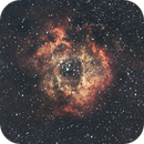 NGC 2244 - Rosette Nebula,                                APK