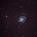 M101 Without Guiding,                                Daniel Kimm