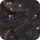 Dark Shark Nebula,                                Simon Todd