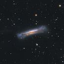 Galaxy NGC3628,                                Simas Šatkauskas