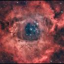 Rosette Nebula,                                Dan Watt