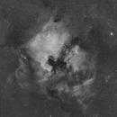 Ha North America / Pelican,                                Landon Boehm