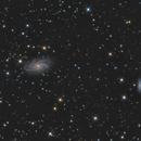 NGC 2336 & IC 467,                                Brice