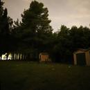 Fireflies 20210615,                                Sergio Alessandrelli