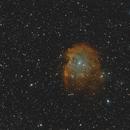NGC 2174 - Monkey Head Nebula @ R-HOO,                                Wolfgang Zimmermann