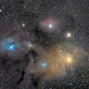 complexe Rho ophiuchus autour d'Antarès,                                  ZlochTeamAstro