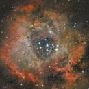 First light Skywachter Quattro 10CF - Rosette Nebula,                                Chris Schaad