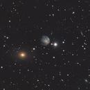 Arp 25 - NGC2276,                                Michael Lorenz