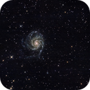 M101,                                David Milligan