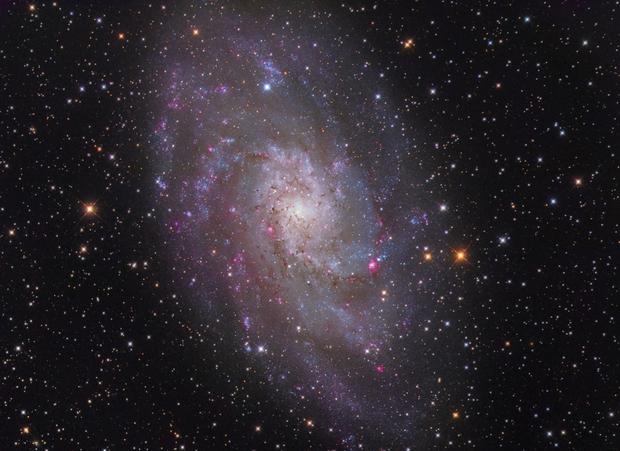M33 The Pinwheel,                                Peter Shah