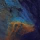 North American/Pelican Nebula - NGC 7000,                                ebomber