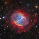 M27 - Not a comet  [Subaru],                                Roberto Colombari