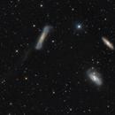 The Leo Triplet - NGC 3628, M66, M65,                    Rafael Schmall