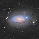 M63 sunflower galaxy and some faint halo (NGC 5055),                                Joe Hua