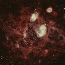 NGC1760 Bean Nebula in the LMC,                                Djt