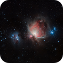 Orion Nebel,                                Floh