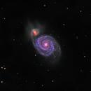 M51 - Whirlpool Galaxy in LRGB,                                CrestwoodSky