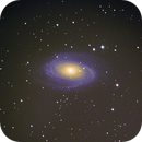Messier 81,                                Jose Manuel