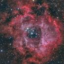 Rosette Nebula - HRGB,                                Alessio Pariani