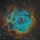 NGC2244 La Rosette,                                Eddy Wicart