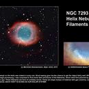 NGC 7293 Helix Nebula Filaments,                                Bernhard Zimmermann