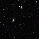 NGC 2841 - Sb Spiral Galaxy,                                gigiastro
