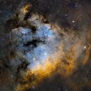 NGC 7822 (SHO),                                Wesley Creech