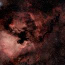 NGC7000 / North-America nebula,                                Thomas_D@astrobin