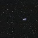 M51,                                Anton