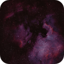 NGC 7000 and Pelican - Bi Color,                                Jonathan W MacCollum