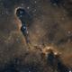 IC 1396,                                Fronk