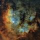 Ced 214 Nebula in SHO,                                DanielZoliro