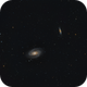 M81 and M82,                                Stan Smith