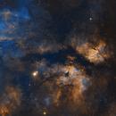 IC1318 butterfly nebula,                                Wei Li