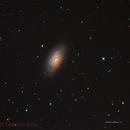 M 64 Black eye galaxy,                                Federico Bossi