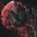 IC 443 - Jellyfish Nebula,                                Walter Koprolin