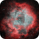 The Rosette Nebula, OSC, NBZ filter, it's been a while...,                                Darren Phillips