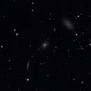 NGC 5985 Group - Draco-Triplett / Draco Triplet,                                Markus Adamaszek
