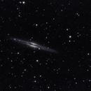 NGC 891,                    Falk Schiel