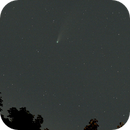 Comet Neowise Leaves Us,                                Zach Coldebella