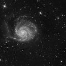 M 101 - Pinwheel Galaxy,                    Falk Schiel