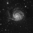 M 101 / Pinwheel Galaxy,                                Falk Schiel