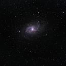Triangulum Galaxy 102mm APO,                                Andrew Burwell