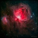 M42 - Orion Nebula,                                Thierry Hergault