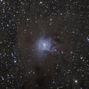 Iris Nebula,                                Samuel